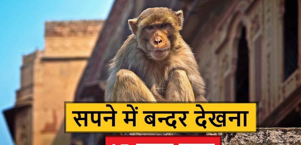 sapne me monkey dekhna